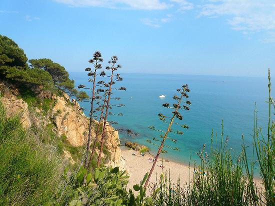 Hotel Volga: nature around Calella