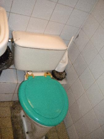 LDM Hotel Leningradsky Youth Palace: toilet