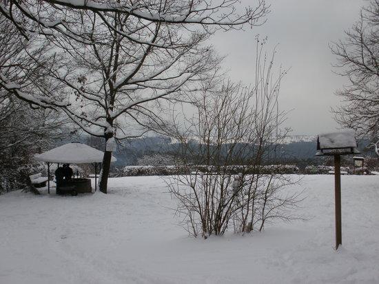 Filderstadt, ألمانيا: Die Feuerstelle hat auch im Winter geöffnet ;-)