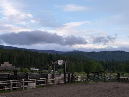 Greenhorn Creek Guest Ranch: Corral