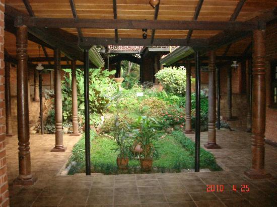 Hotel Tree of Life: ツリ-オブザライフホテルの部屋の前の中庭です。