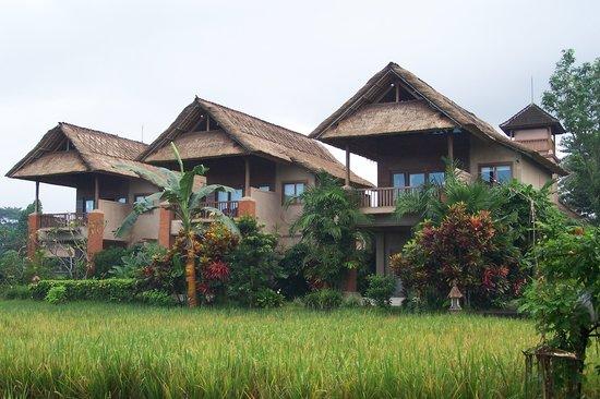 Bali Traditional Tours - Day Tours: Tegal Sari accommodation Ubud