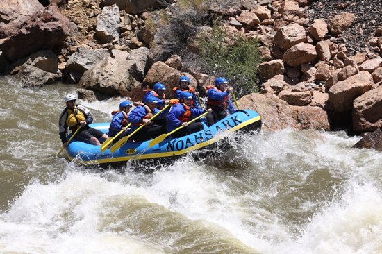Noah's Ark Colorado Rafting & Aerial Adventure Park