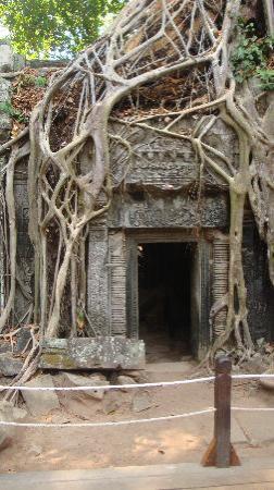 Monoreach Angkor Hotel: Temples of Angkor Wat