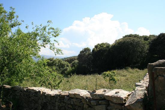 Agriturismo Canu : Aussicht vom Gästehaus aus