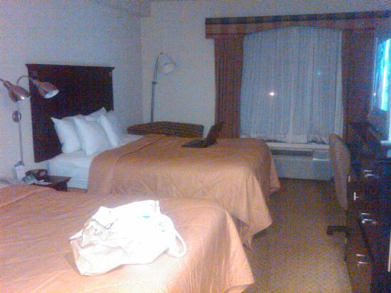Comfort Inn & Suites Airport: Room