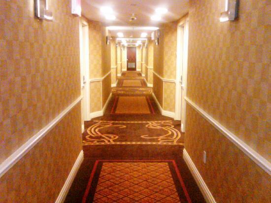 Comfort Inn & Suites Airport: Hallway