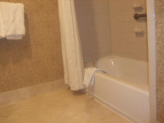 DoubleTree by Hilton Hotel Atlanta - Buckhead: Bathroom2