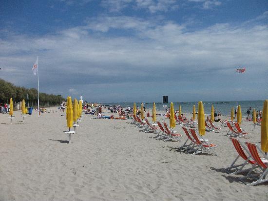 Camping Vigna sul Mar: beach shot