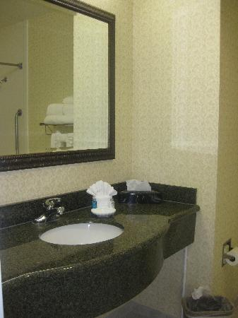 Hampton Inn & Suites Sacramento-Cal Expo: Bathroom