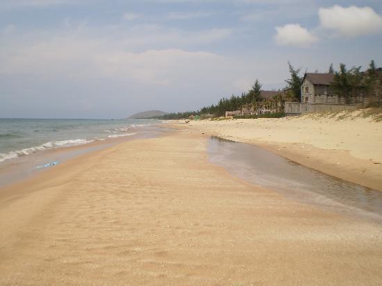 Dragon Fly Guest House : The Beach near the hotel
