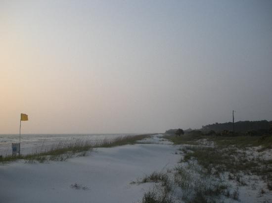 St. Joseph Peninsula State Park: Sugar Sand beach...