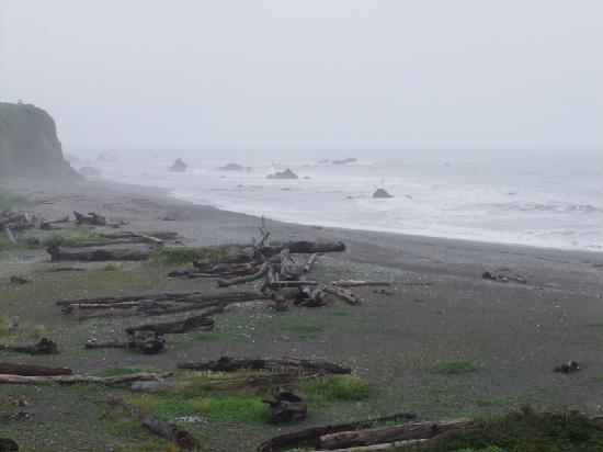 Brookings, OR: The view across the beach, might be better in the sun.