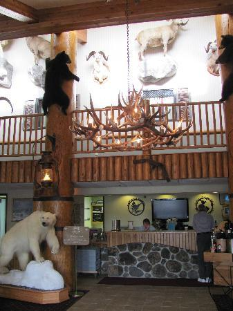 AmericInn Lodge & Suites Cody - Yellowstone : just a few of the animals in the lobby