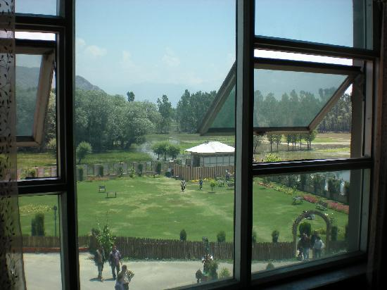 The Silver Star : window view
