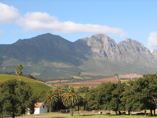 Stellenbosch Attractions