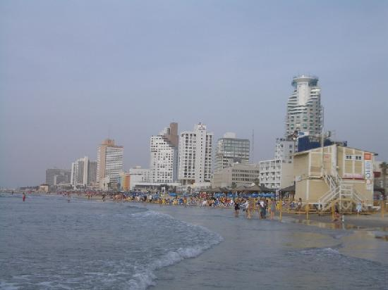 The Savoy Tel-Aviv Sea Side: Beach 30m down the street from hotel (2)