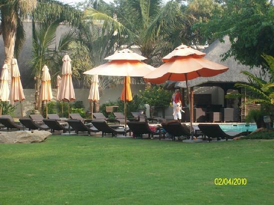 Hans Merensky Hotel & Estate: Garden by the poolside