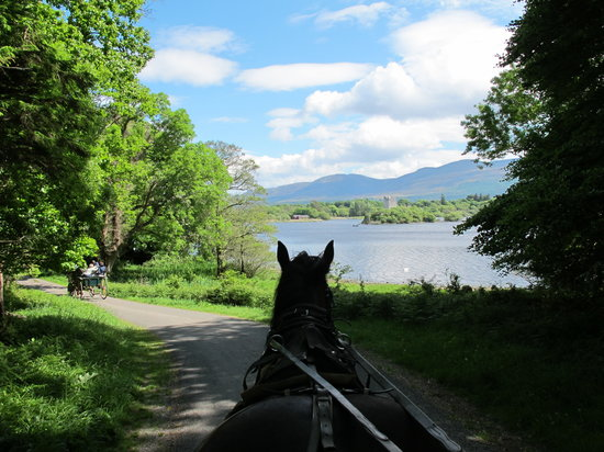 Killarney, Irland: View from car