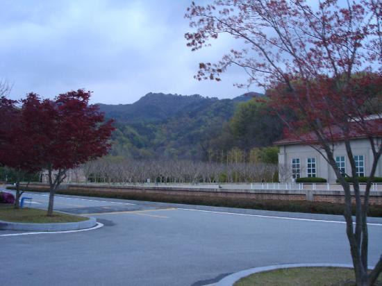 Damyang Resort Spa & Hotel : surrounding of the resort