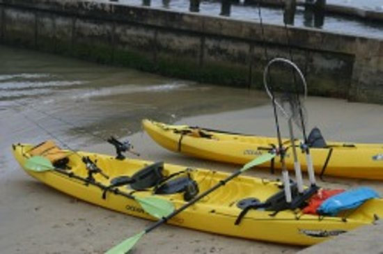 Newport Harbor Kayak Fishing : Kayaks ready to go!
