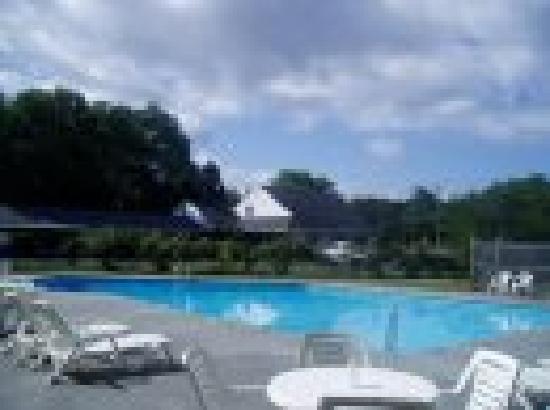 Blue Dolphin Inn: Pool