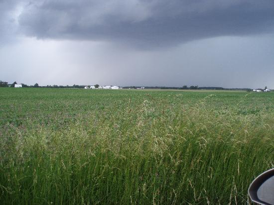 Lynn, IN: lots of farmland