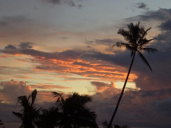 Taveuni Palms Resort: Beautiful sunsets