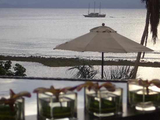 Taveuni Palms Resort: View from upper villa