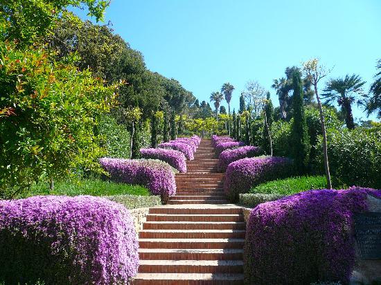 Jardí Botànic Marimurtra: stairway