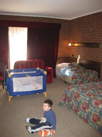 Albury Townhouse Motel : Room