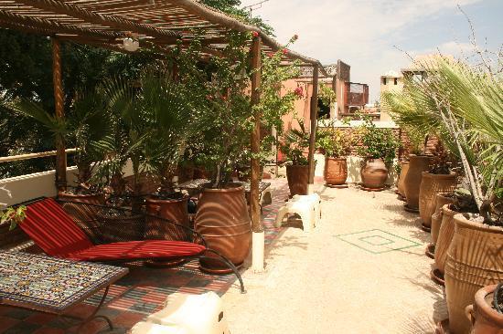 Riad Malika: Sun terrace
