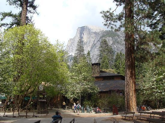 1 double 1 single heated cabin picture of half dome for Curry village cabins yosemite