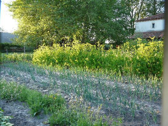La grange picture of ferme auberge du jardin de violette for Auberge du jardin