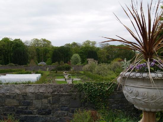 Castle Durrow: Garden 2