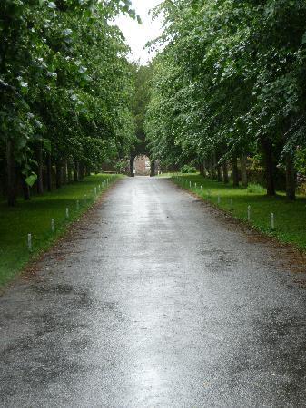 Manoir du Stang : allée d'accès au manoir