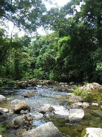Hotel Rancho Cerro Azul: Private River