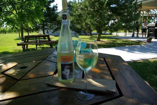 Пили-Айленд, Канада: Wine