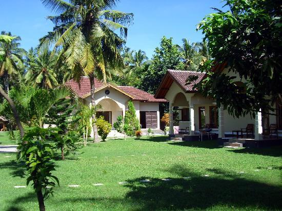 Yuli's Homestay: Garden area
