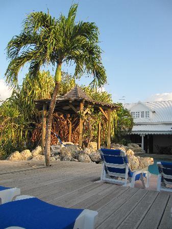 Hostellerie des Chateaux: Le palmier-douche