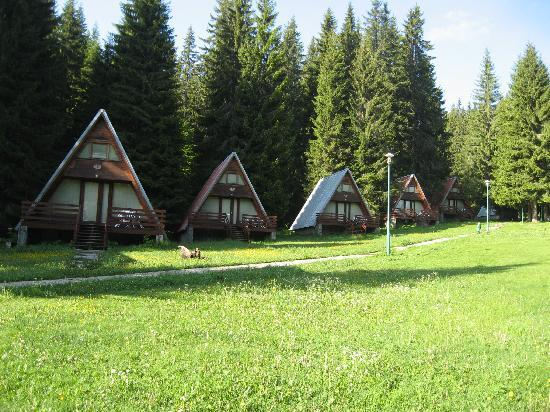 Malina Village: summer