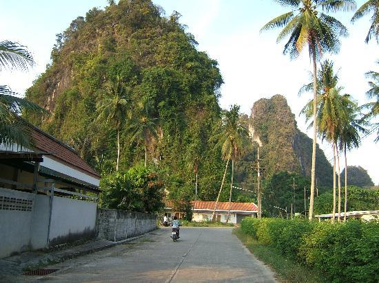 Baan Suan Thip Homestay: road leading to homestay