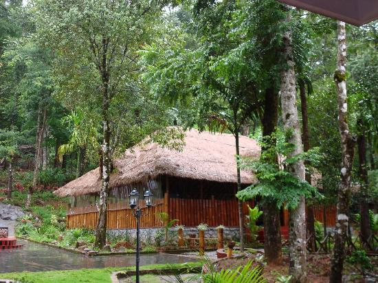 Vythiri, India: The resort lobby