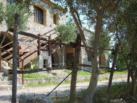Guardavalle, Italy: foto van agriturismo
