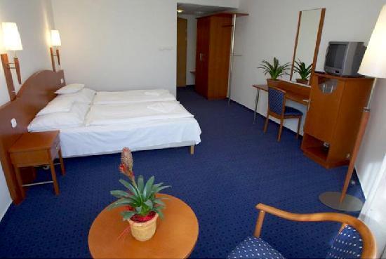 Szonyi Hotel : Doppelzimmer