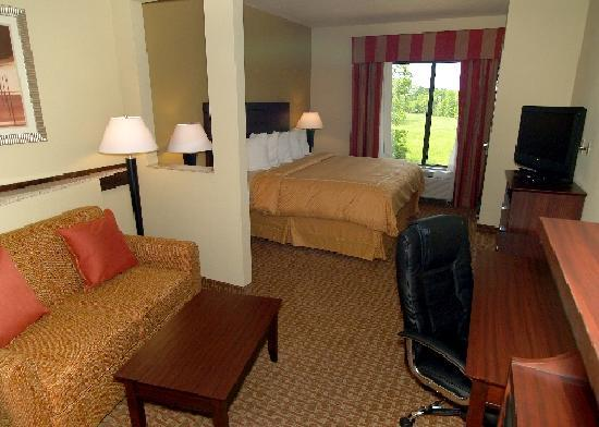 Comfort Suites Airport South : King Suite