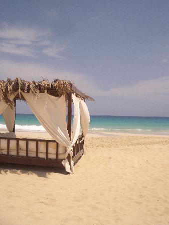 Jaz Crystal Resort: Gorgeous Beach