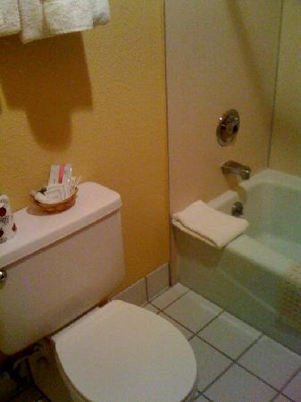 BEST WESTERN Sunridge Inn: bathroom very clean & large