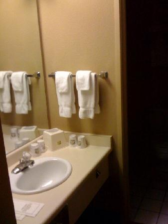 BEST WESTERN Sunridge Inn: oddly low vanity with bad lighting