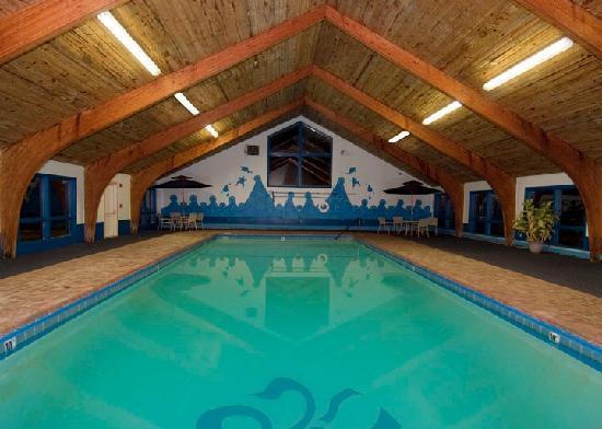 Presque Isle Inn & Convention Center: Indoor Pool